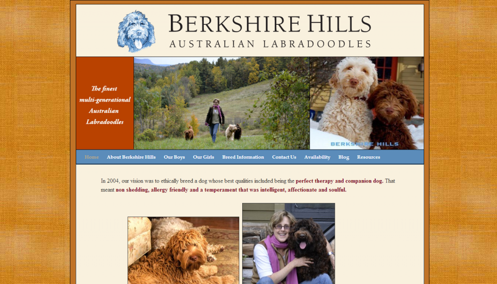 berkshirehillslabradoodles