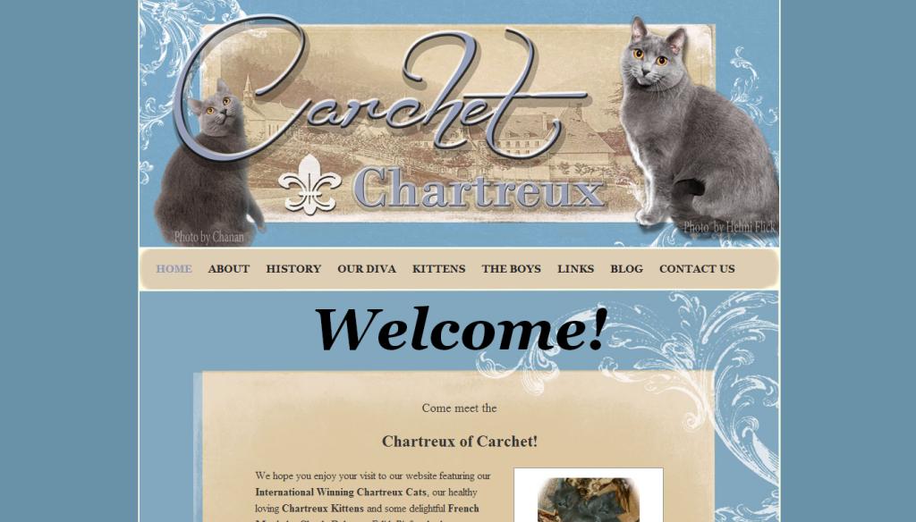 chartreuxcats