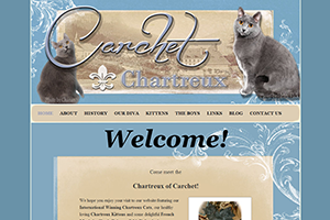 chartreuxcats_S